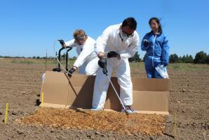 From left: Anna Zwieniecka, Jessica Wong and Peiman Aminabadi spray a harmless strain of E. coli on cantaloupe crops at a UC Davis test field. (Photos by Sena Christian)
