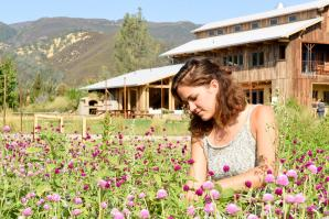Hannah Muller harvests flowers at Full Belly Farm in Capay Valley.