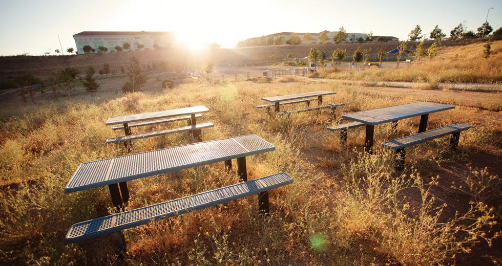 Power Inn Alliance, a coalition of business and property owners in the area, adopted maintenance of Granite Regional Park until the city can restore funding.
