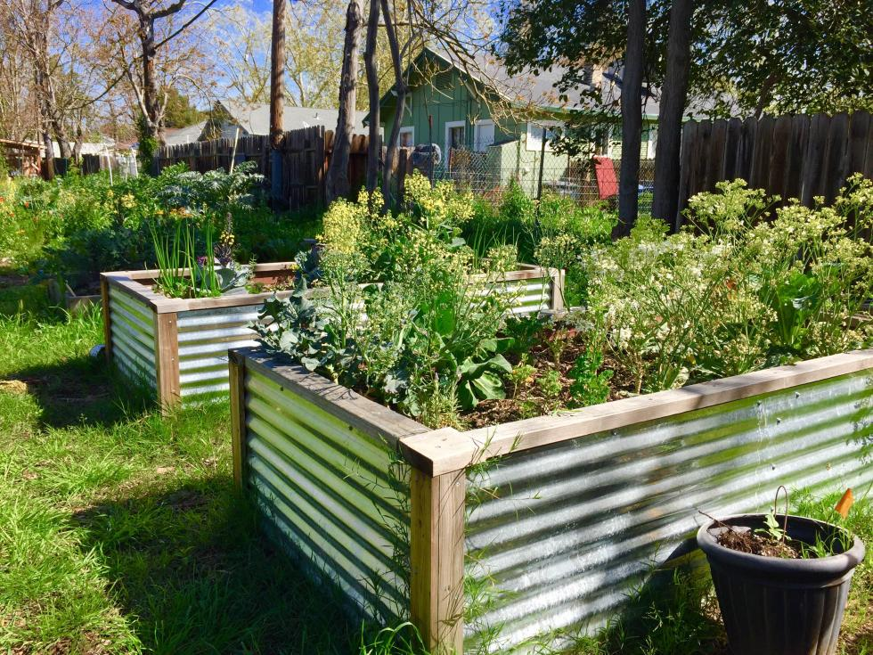 This garden was the first to be created by Oak Park Sol.
