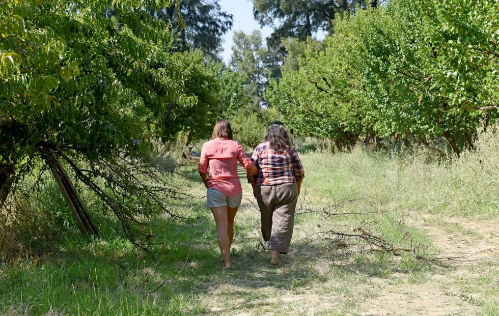 Claire and Annie Main walk through a peach orchard at Good Hummus Produce in Capay Valley.