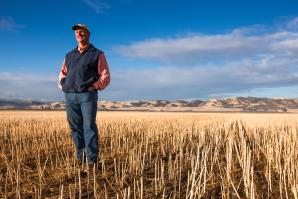 Yolo County's Fritz Durst has been using the no-till method for 20 years.