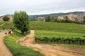 Gold Hill Winery in Placerville