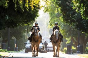 "California Highway Patrol Officer Jeff Lane first wound up on horseback when his young son wanted to take riding lessons. ""I was so scared, I took a gun,"" he recalls. But Lane's mind quickly changed, and ""I actually left flying helicopters to ride horses,"" he says."