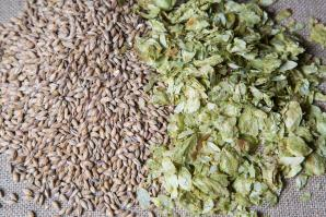 Summer hops and amber malt  (shutterstock)